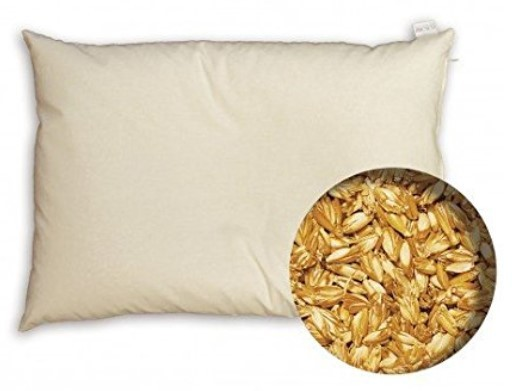 meilleur oreiller epeautre bio