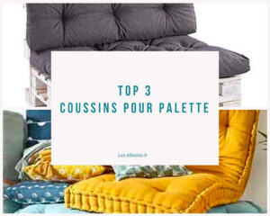 top3 coussin palette