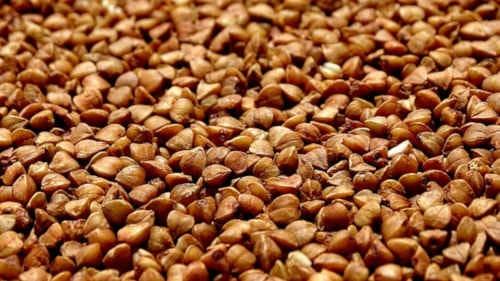 oreillers en sarrasin bio - graines de sarrasin