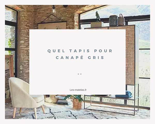 tapis-canape-gris